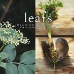 leafs_2d_brochure